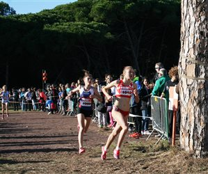 CROSS DE HYERES